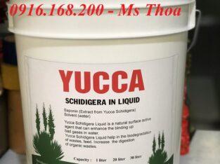 Yucca Schidigera In Liquid – Yucca nước hấp thu khí độc